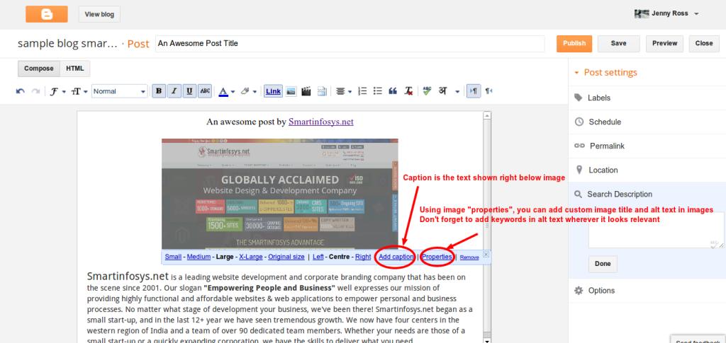 Setting image properties in blogger: screenshot