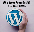 Why WordPress is Still the Best CMS?
