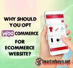 Top Reasons to choose WooCommerce for building WordPress eCommerce website