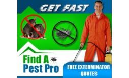 https://www.smartinfosys.net/14009-product_listing/yba079.jpg