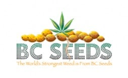https://www.smartinfosys.net/50187-product_listing/bc-seeds.jpg