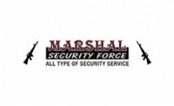 https://www.smartinfosys.net/50562-product_listing/marshalsecurityforcein.jpg