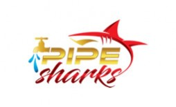 https://www.smartinfosys.net/50673-product_listing/thepipesharkscom.jpg