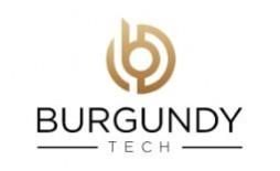 https://www.smartinfosys.net/50840-product_listing/burgundytechcom.jpg
