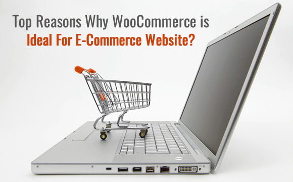 Top Reasons Why WooCommerce is Ideal For E-Commerce Website?