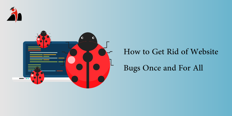 How to Get Rid of Website Bugs Once and For All