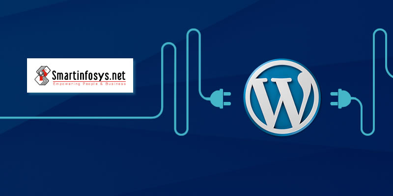 Speed is paramount in WordPress Websites - Choose the Right WordPress Design, Plugins and Hosting