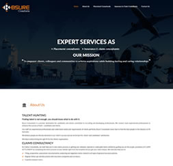 Bsure Consultants - Single Page Website